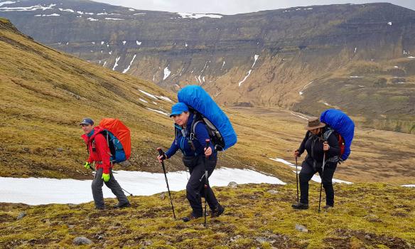 Framtíðar leiðsögumenn