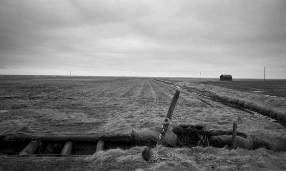 Hafði þessa með í nesti, en þessi var tekin á Rauðasandi á leið heim á sunnudeginum.
