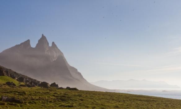 Brunnhornið er flott.
