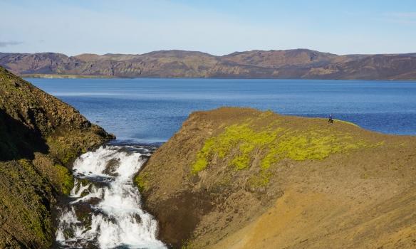 Birkir hleypur við Útfallið