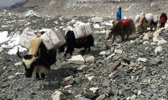 Undirbúningur fyrir Everest tímabilið