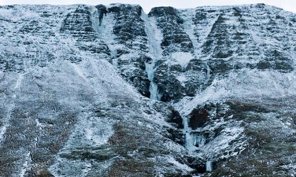 Single malt on the rocks í miðjunni.