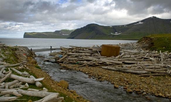 Rekaviður í Kjaransvík undir Álfsfelli.