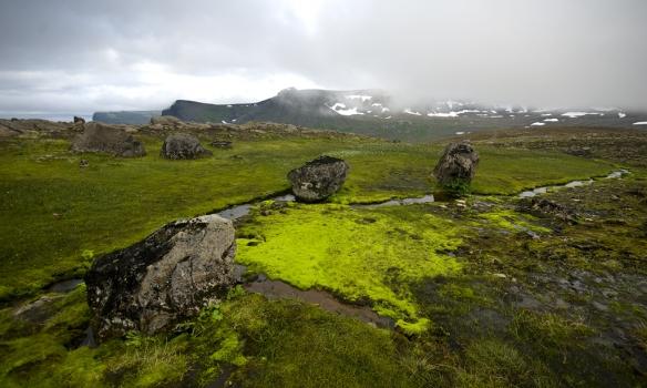 í Bæjardal, í baksýn sést í Hælavíkurbjarg og Skálina sem gönguleiðin liggur um.