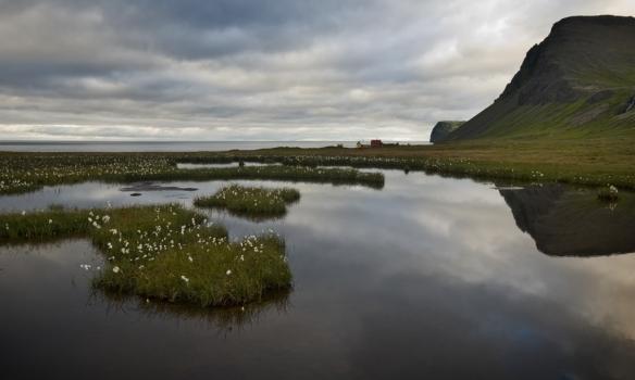 Búðabær og Búðasel í Hlöðuvík. Falleg mýri er þarna fyrir ofan húsin.