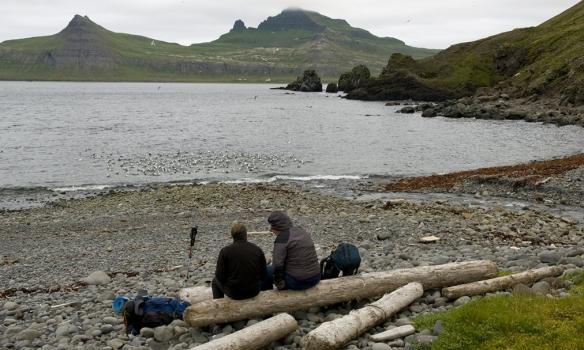 Erlendir ferðalangar virða fyrir sér Hornbjarg úr Rekavík.